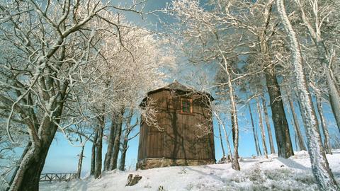 Goethehäuschen auf dem Kickelhahn bei Ilmenau von rauhreifbesetzten Bäumen umrahmt