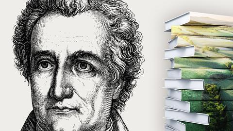 Portrait Goethe  mit Buchstapel