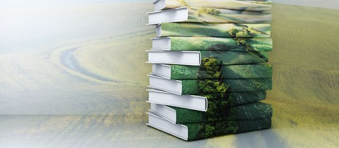 Stapel von Büchern vor Landschaft