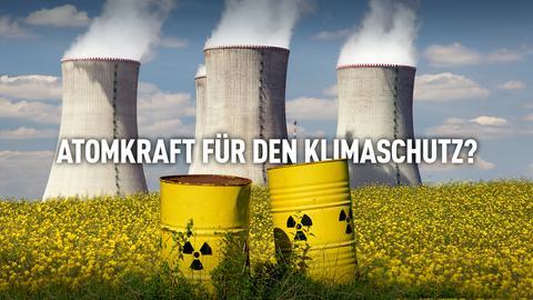 Atomkraft für den Klimaschutz? Atomkraftwerke auf einer Wiese