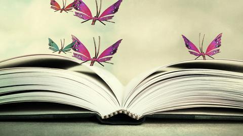 Buch mit Schmetterlingen