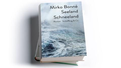 Mirko Bonné: Seeland Schneeland