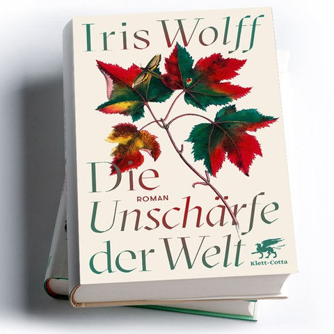 Iris Wolff: Die Unschärfe der Welt