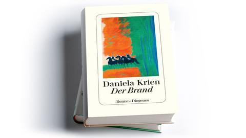 Daniela Krien: Der Brand