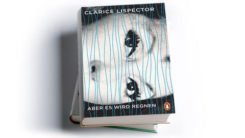 Clarice Lispector: Aber es wird regnen