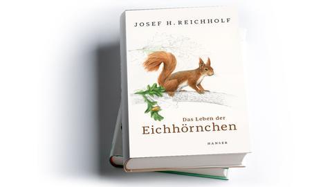 Cover Josef H. Reichholf: Das Leben der Eichhörnchen