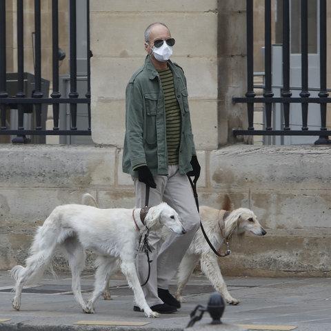 Einsamer Hundehalter in Paris