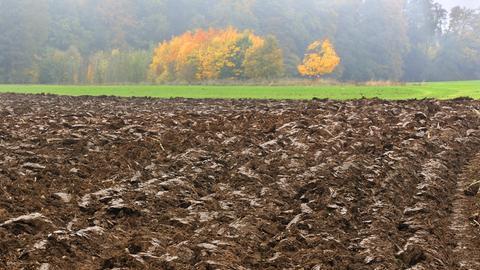 Frisch umbrochener Acker in einer diesigen Herbstlandschaft, Enzenreuth, Fränkische Schweiz, Mittelfranken, Bayern