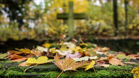 Herbstlaub auf einem Friedhof