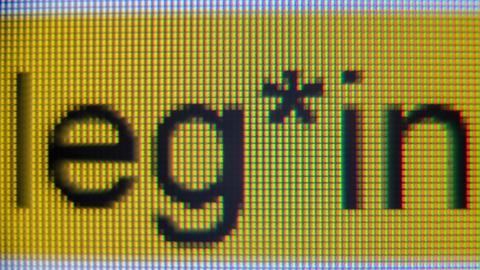 """Das sogenannte """"Gender-Sternchen"""" steht in der Handreichung """"Hinweise zur Umsetzung der geschlechtersensiblen Sprache für die Verwaltung der Landeshauptstadt Stuttgart"""" in der Anrede """"Kolleg*innen"""" und ist auf einem Bildschirm zu sehen."""