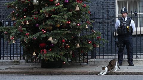 Ein Polieibeamter und die Katze Larry in der Downingstreet, London.