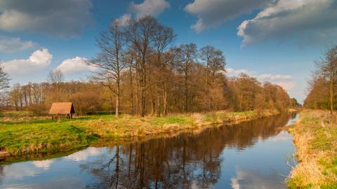 Lasica Kanal im Kampinoski Nationalpark.