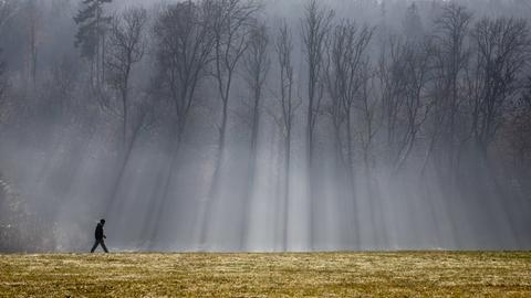 ein Spaziergänger läuft am Waldrand, herbstlicher Nebel liegt über der Landschaft