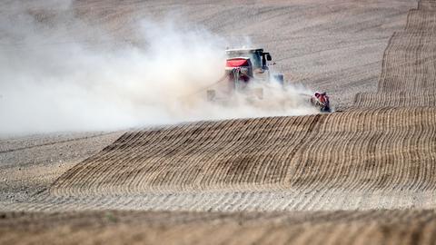 Ein Traktor in Mecklenburg-Vorpommern zieht eine Staubfahne hinter sich her.