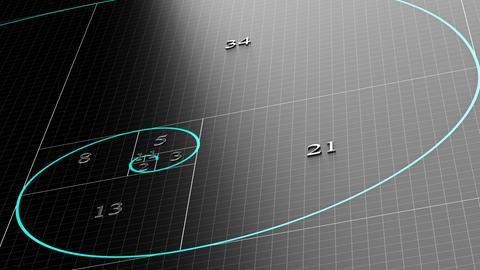 Fibonacci Spirale oder Sequenz