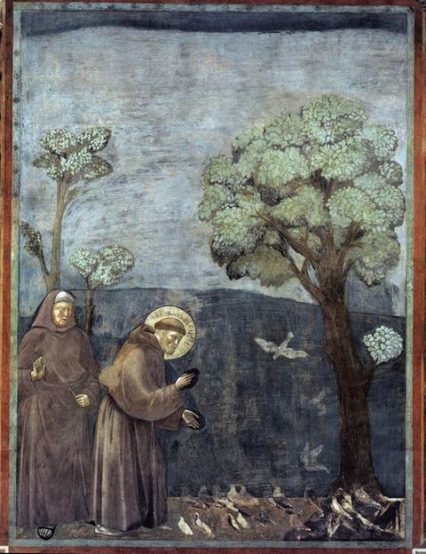 Giotto: Franz von Assisi predigt den Vögeln