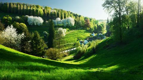 Romantik in Hessen –eine Zeitreise