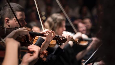 Geigen Geige Violine Finger