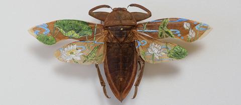 Ausstellung Flügelschlag im Sinclair-Haus Bad Homburg: Akihiro Higuchi, HANA, H0118