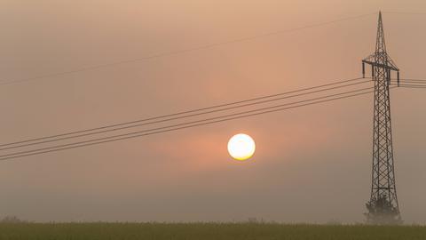 Morgennebel über einem Rapsfeld bei Lohfelden