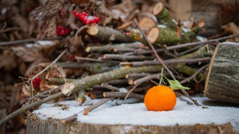 Orange Schnee Winter