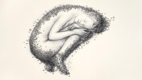 Juul Kraijer: Untitled, 2016-2017