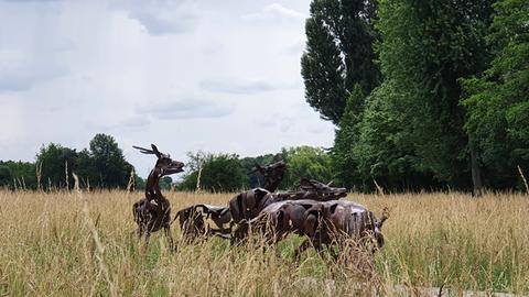 Kunst im Freien - 2 - Eschborn