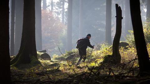 Wanderer im Taunus