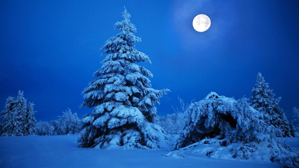 Winter mit Mond