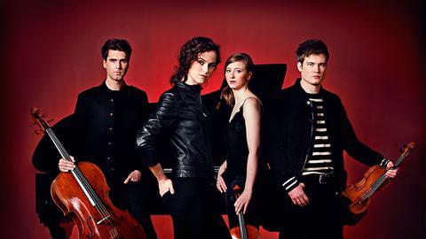 Das Notos-Quartett