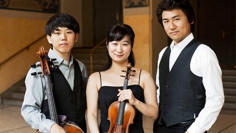 Das Aoi-Trio