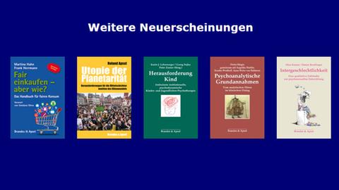 Verlagsprogramm Brandes & Apsel