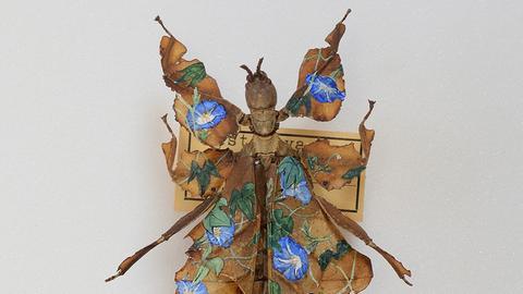 Sinclair-Haus Ausstellung Flügelschlag